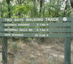 two bays walking track.