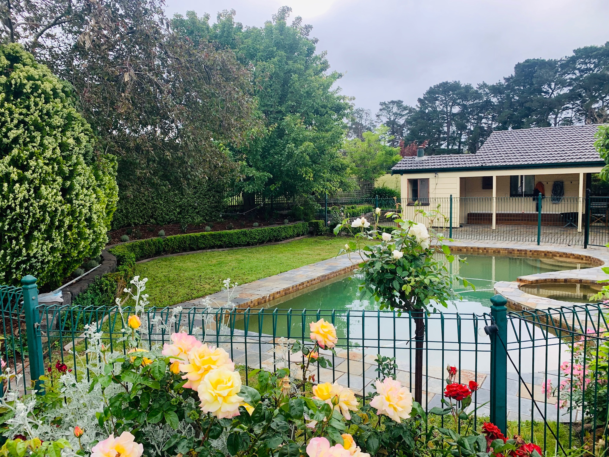 Pool with rose garden in foreground. Adalong Park, holiday rental Moorooduc.
